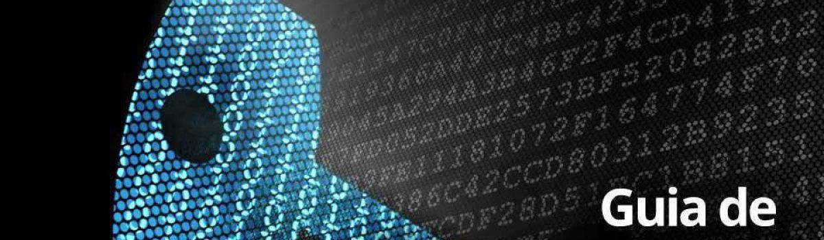Um guia didático para a cibersegurança